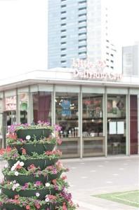 Tokyo - Flowers