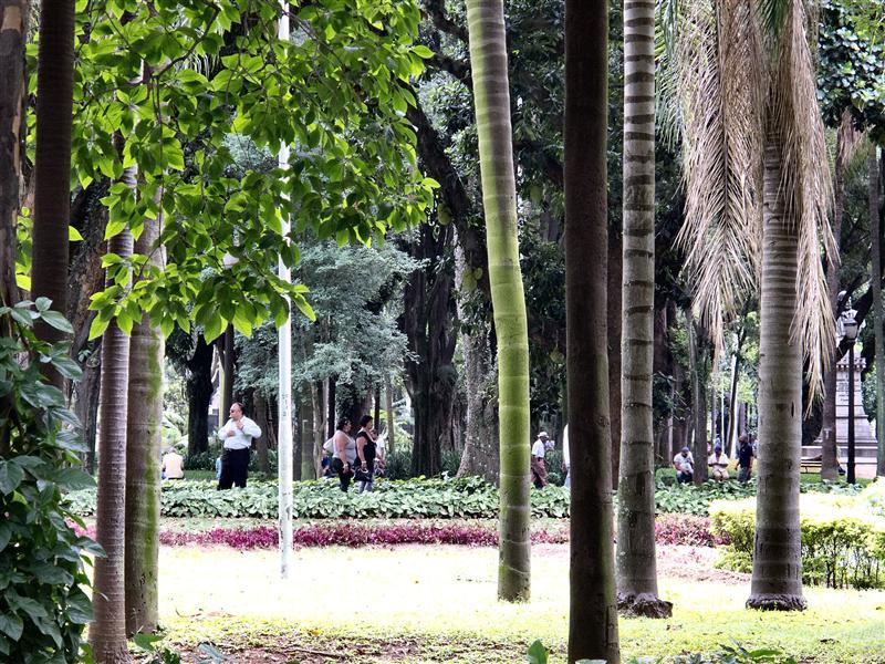 São Paulo - Parque da Luz
